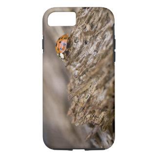 Ladybug on old wood, Apalachicola Bluffs and iPhone 8/7 Case