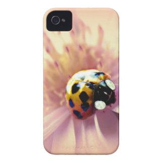 Ladybug on Pink Daisy iPhone 4 Case-Mate Case