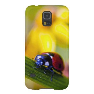 Ladybug on Ragwort flowers Galaxy S5 Cover