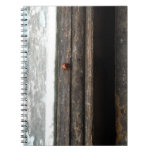 Ladybug on Rustic wood window Spiral Note Books