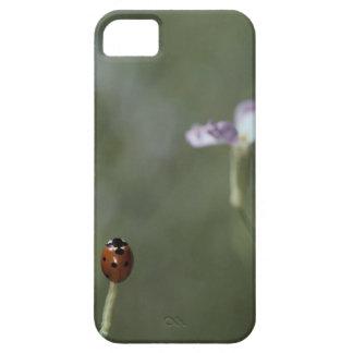 Ladybug on Stem iPhone SE/5/5s Case
