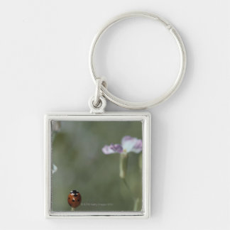 Ladybug on Stem Silver-Colored Square Keychain