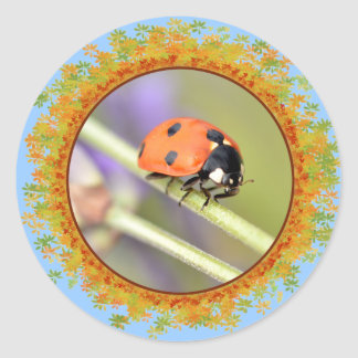 Ladybug on stem of lavender flower in frame of lea classic round sticker