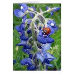 Ladybug on Texas Bluebonnet Stationery Note Card