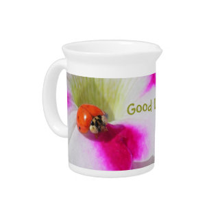 Ladybug on the petunia - Pitcher