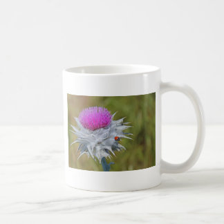 Ladybug on thistle thorn. mugs