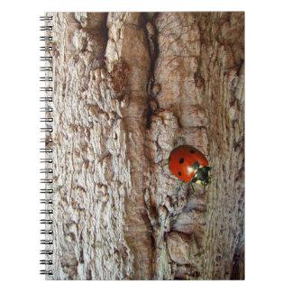 Ladybug on tree bark spiral note book