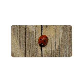 Ladybug on wood label