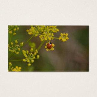 Ladybug on yellow flower business card