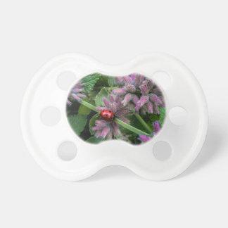 Ladybug Pacifier