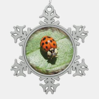 Ladybug ~ Pewter ornament