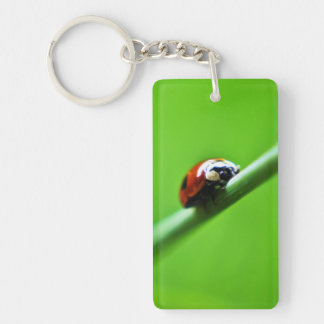 Ladybug photo keychain