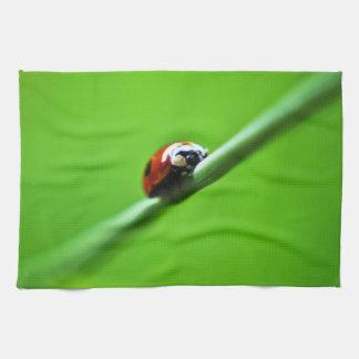 Ladybug photo hand towel