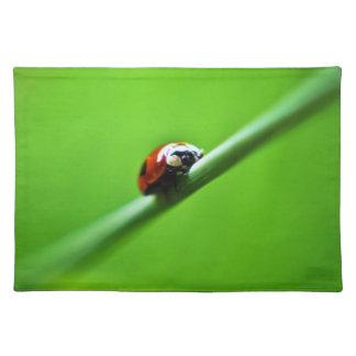 Ladybug photo placemat