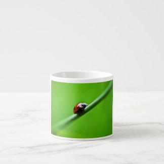 Ladybug photo espresso mug