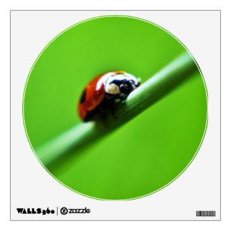 Ladybug photo wall sticker