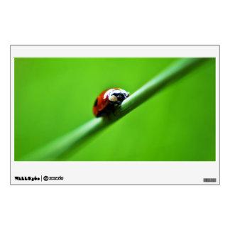 Ladybug photo wall graphics
