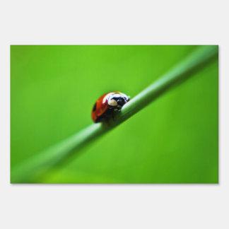 Ladybug photo lawn sign