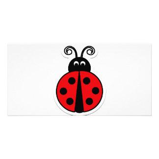 ladybug photo cards