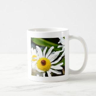 Ladybug Photography Coffee Mug