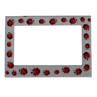 Ladybug Picture Frame Ladybird Art Frame Picture Frame Magnets