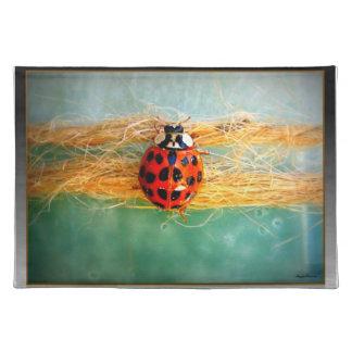 Ladybug Placemat