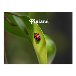 Ladybug Post Cards