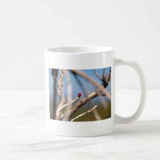 Ladybug resting on tree stem. mug