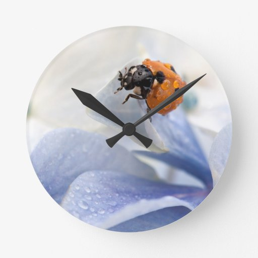 Ladybug Round Wall Clocks