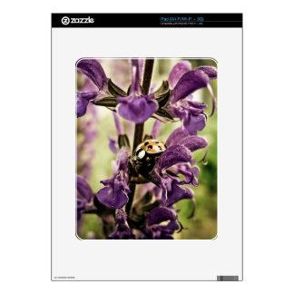 Ladybug Skin For iPad