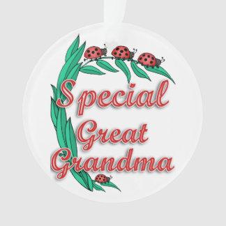 Ladybug Special Great Grandma