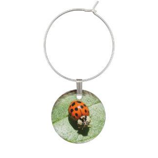 Ladybug ~ Wine Charm