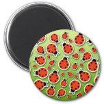 Ladybugs Galore Magnet