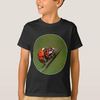 Ladybugs In Love T-Shirt