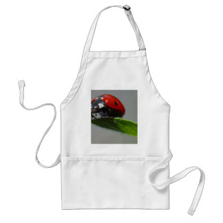 Ladybugs Insects Adult Apron