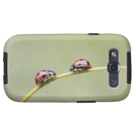 Ladybugs on stem, Biei, Hokkaido, Japan Samsung Galaxy S3 Cover