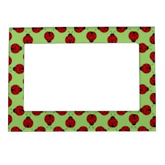 Ladybugs Pattern Magnetic Frame