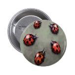 Ladybugs Pinback Button