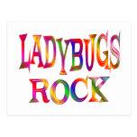 Ladybugs Rock Postcard