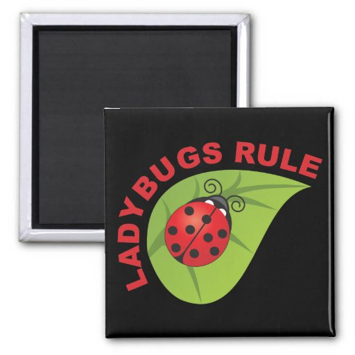Ladybugs Rule 2 Inch Square Magnet