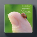 """Ladybugs &quot;Smallest Miracles&quot; Plaque Gift<br><div class=""""desc"""">Cute ladybug on thumb,  &quot;Even the smallest things can be miracles.&quot; Plaque is a great inspirational and encouragement plaque. Original photo by Cherie Haines.</div>"""