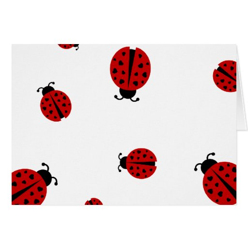 ladybugz. tarjeta de felicitación