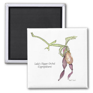 Lady's Slipper Orchid Magnet