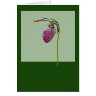 Ladyslipper 2 tarjeta de felicitación