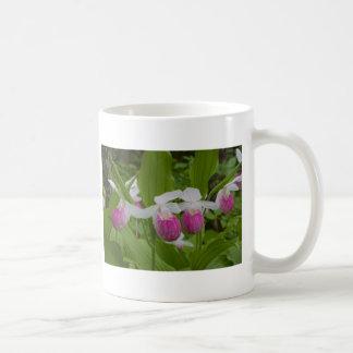 ladyslipper classic white coffee mug