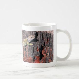 Lagarto agarrado taza