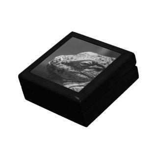 Lagarto blanco y negro caja de recuerdo