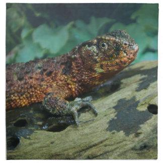 Lagarto chino del cocodrilo servilletas imprimidas