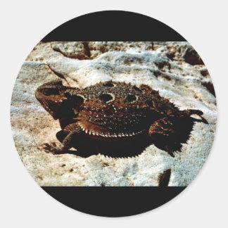 lagarto Cortocircuito-de cuernos Pegatina Redonda