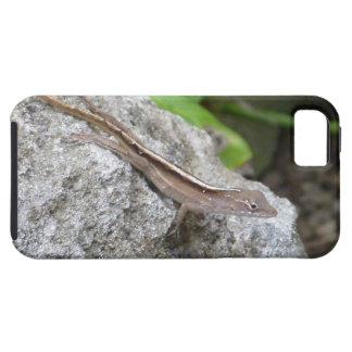 Lagarto de Anole iPhone 5 Case-Mate Protectores